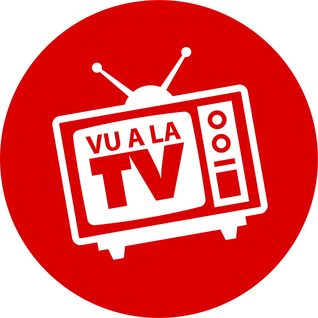 vue à la télé
